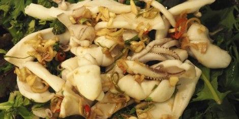 squidsaladL