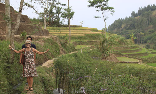 Walking on the narrow path in teh paddy fields!