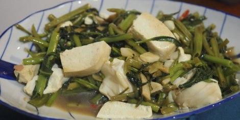morning-glory-tofu