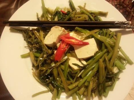 morning glory tofu