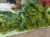 Choy sum, or local broccoli
